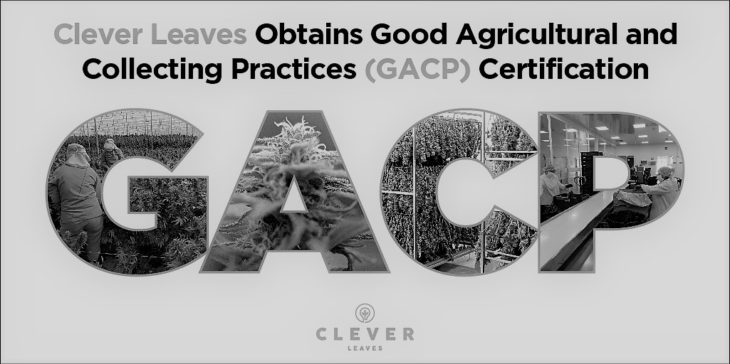 Clever Leaves Granted Good Agricultural and Collecting Practices (GACP) Certification